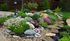цветы, клумбы, камни, забор