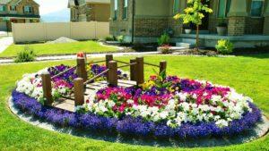 клумба, цветы, сад, дом