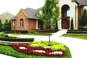 дом, дерево, цветы