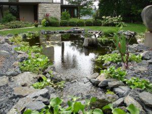 водоем, камни, зелень, дом