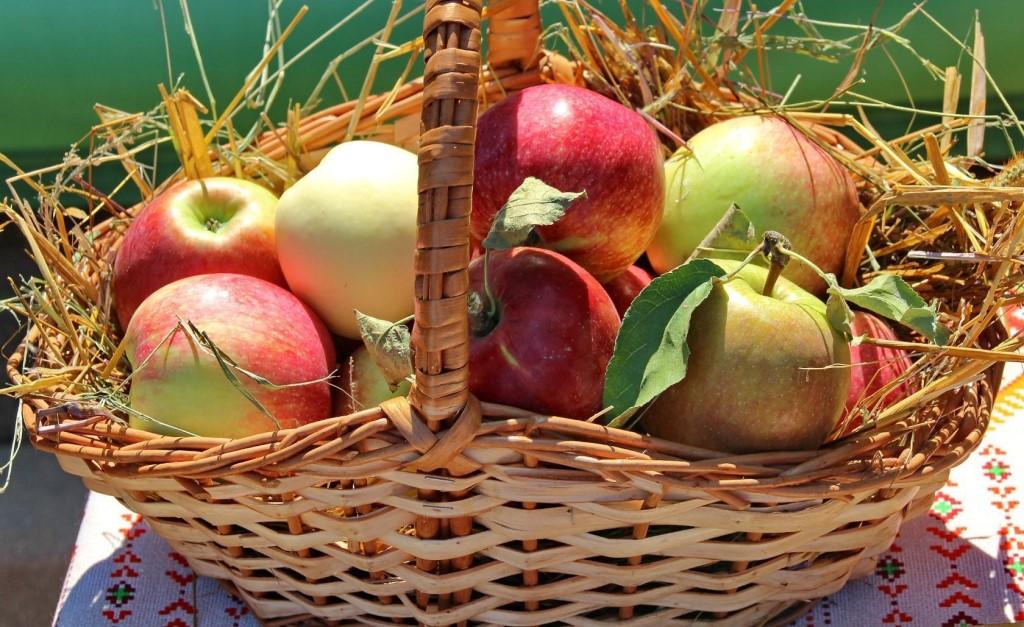 Яблоки в соломе