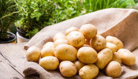 Противоречивый картофель