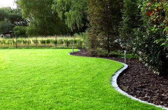 Красивый декоративный газон