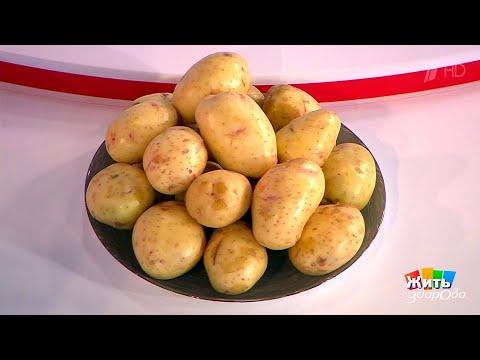 Противоречивый картофель: польза и вред любимого овоща (все способы применения)