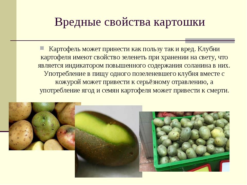 Вредные свойства картошки