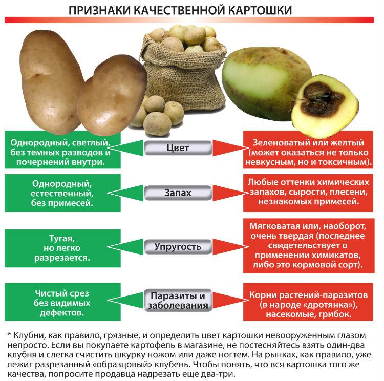 Качественная картошка