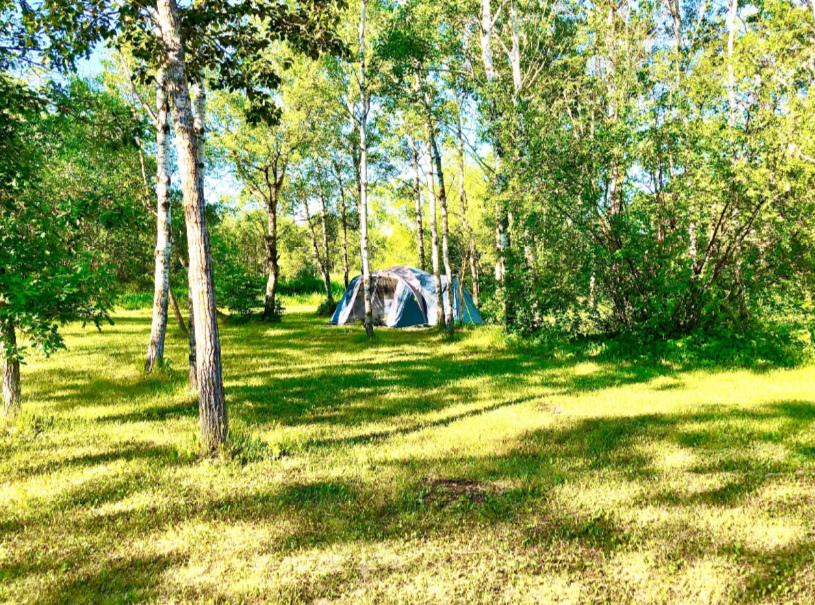 Палатка летом