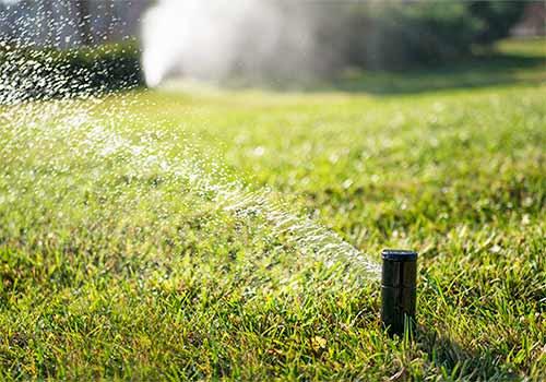 Зеленый газон со свежей травой благодаря автоматической системы полив газона