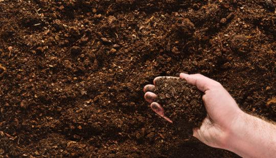 Как я сделал всё почву на огороде рыхлой