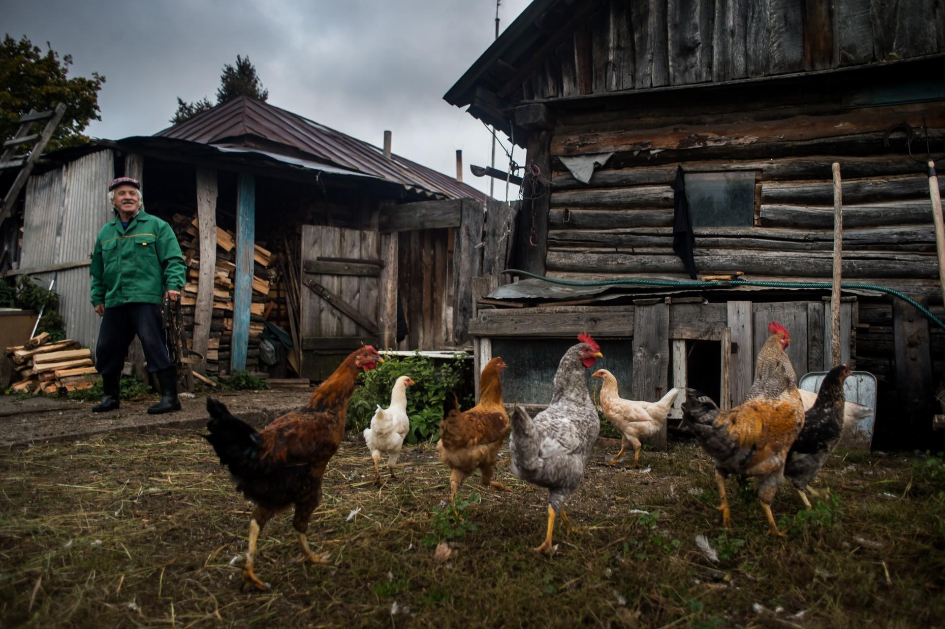 жизнь в деревне как на картинке красив каштан весной