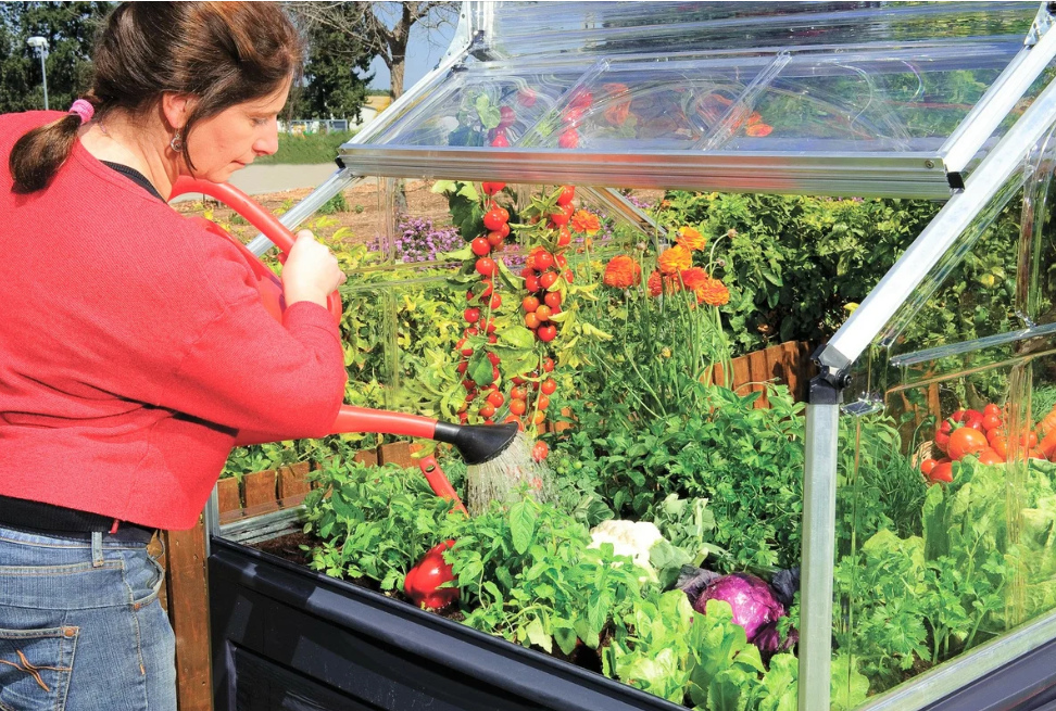 Теплицы украсят ваш сад