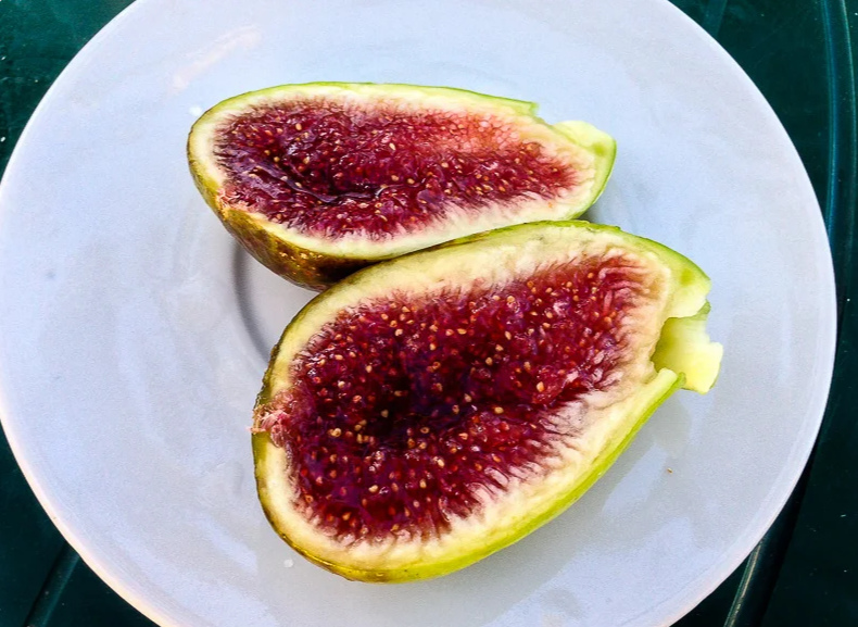 Брунсвик плоды