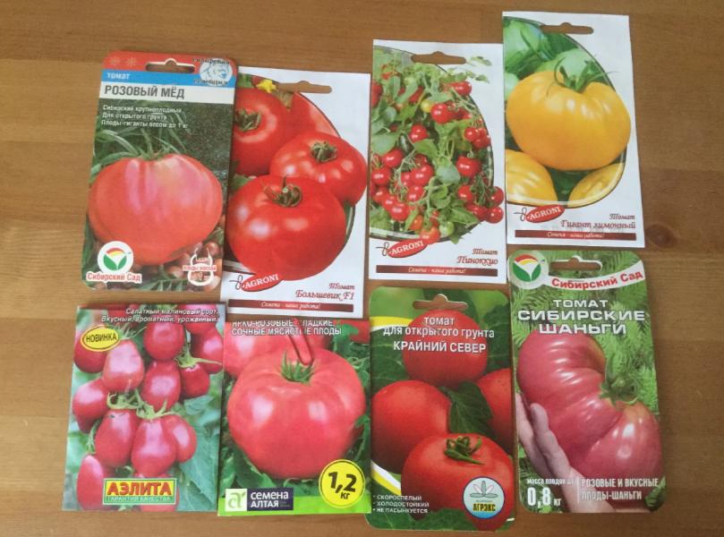 Какие семена я купила в этом году и почему