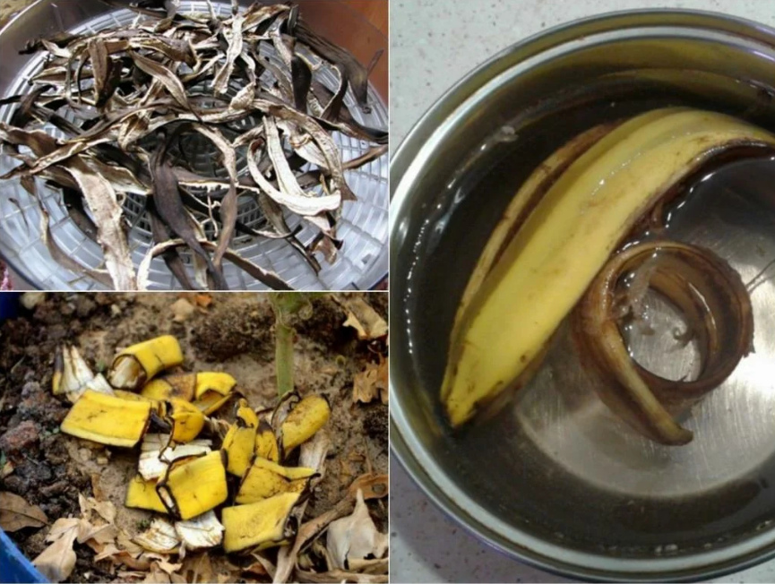 Банановая кожура для рассады