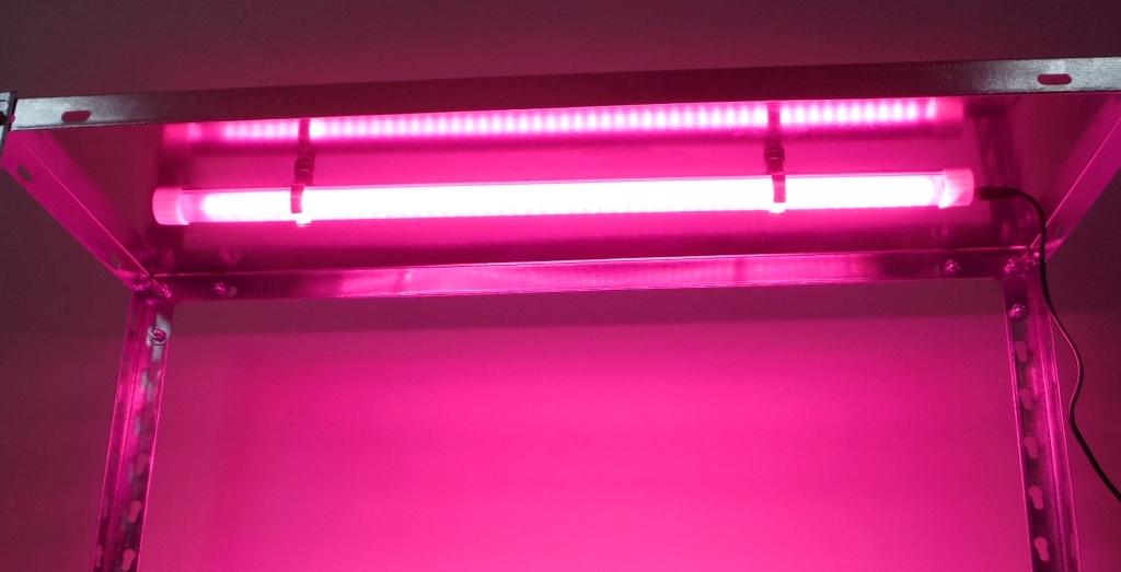 Инфракрасный свет для рассады