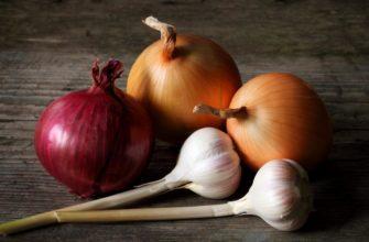 Получения замечательного урожая чеснока илука