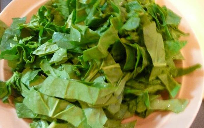 Щавель конский для салата