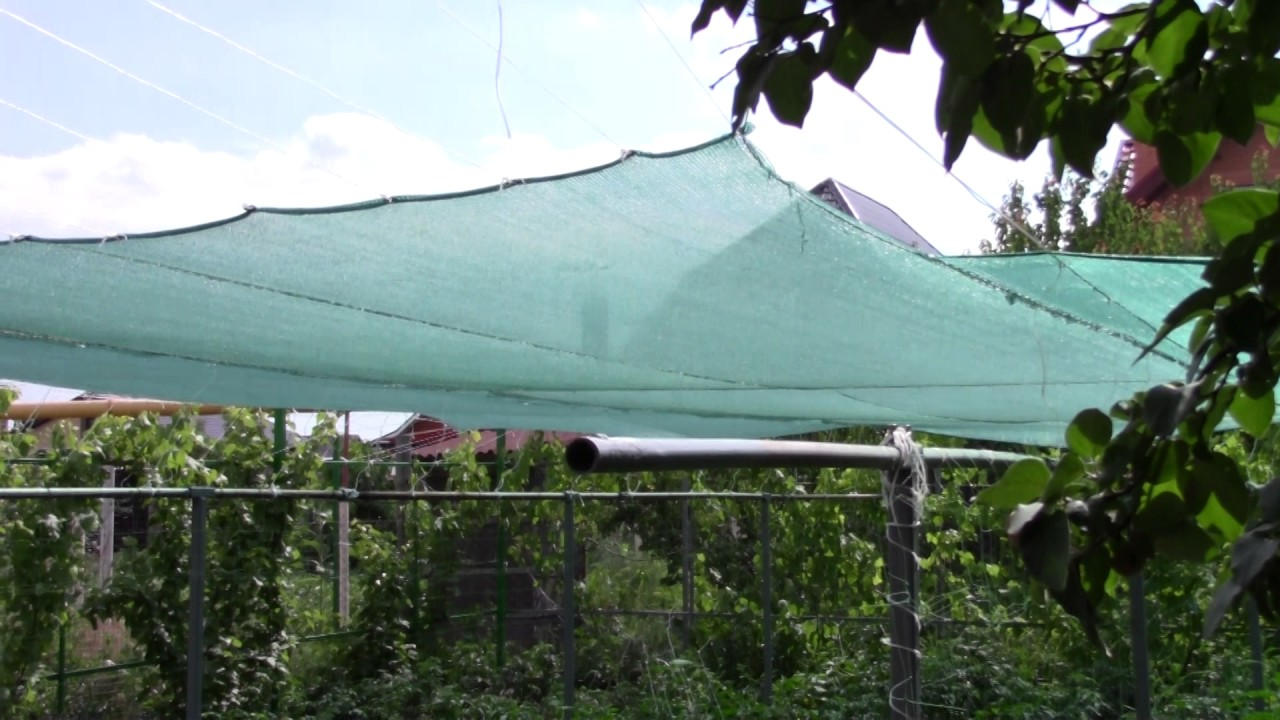 Затеняющая сетка на огороде