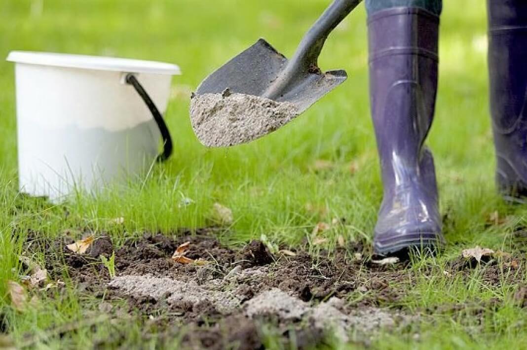 Опылить почву негашеной известью