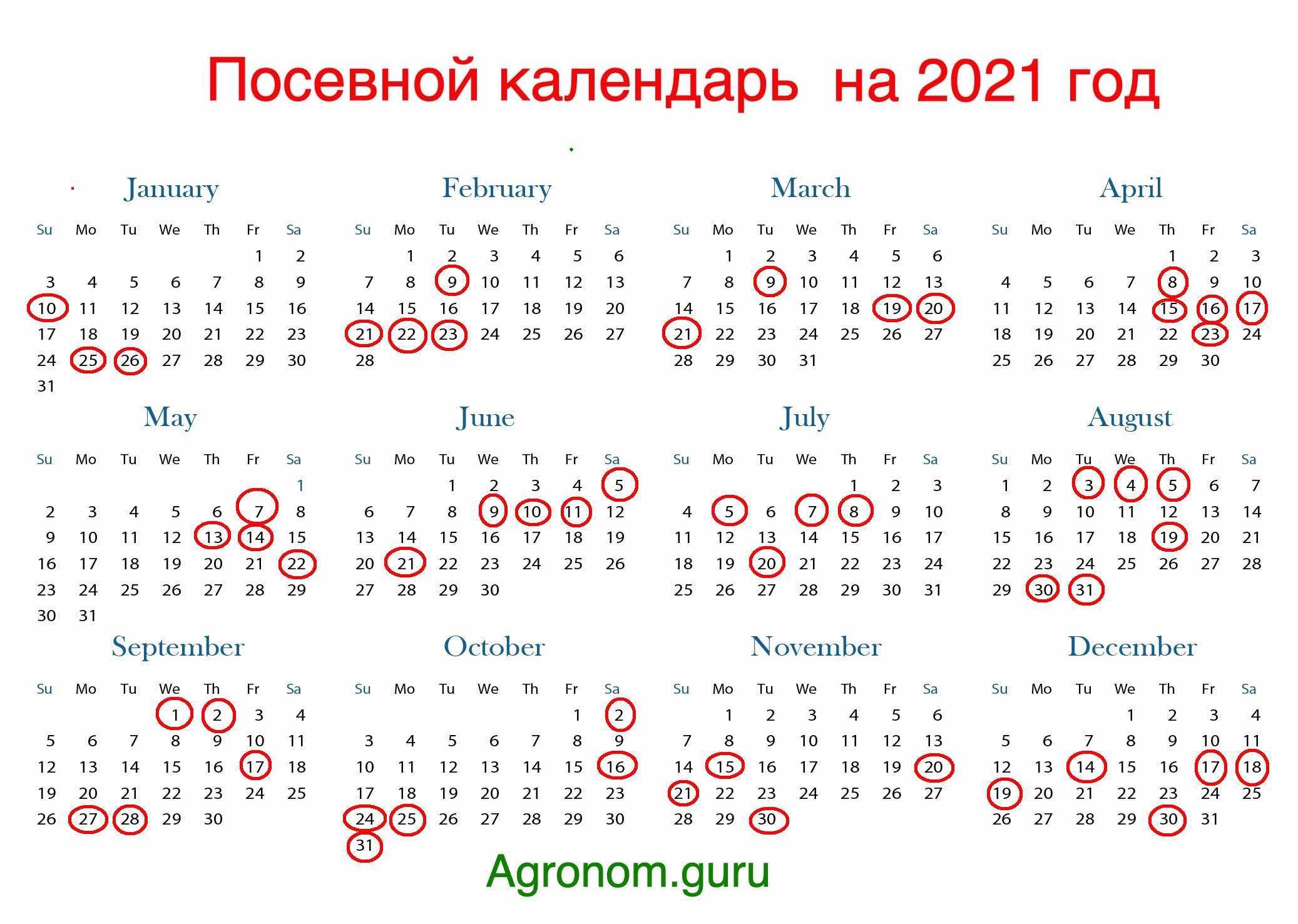 Посевной календарь 2021