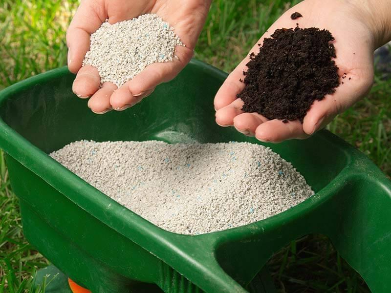 Применения вермикулита в растениеводстве