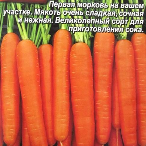 Морковь сахарный пальчик