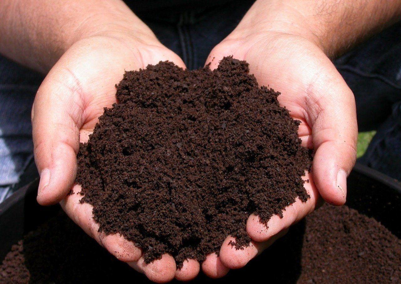 Перегной и песок для почвы