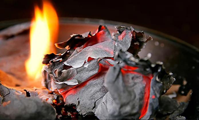 Сожжённые в пепел листьямать и мачехи