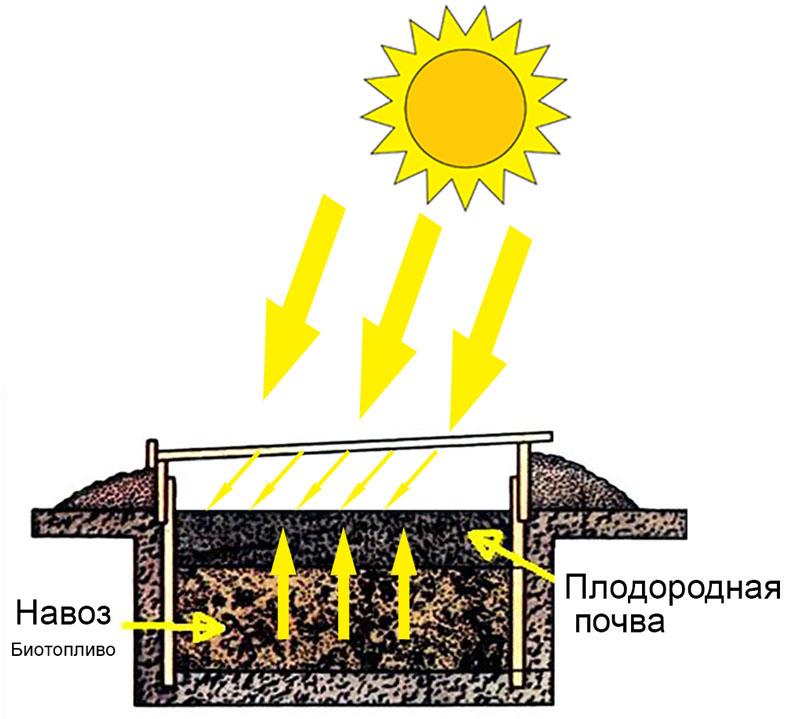 Биотопливом навоз для теплицы