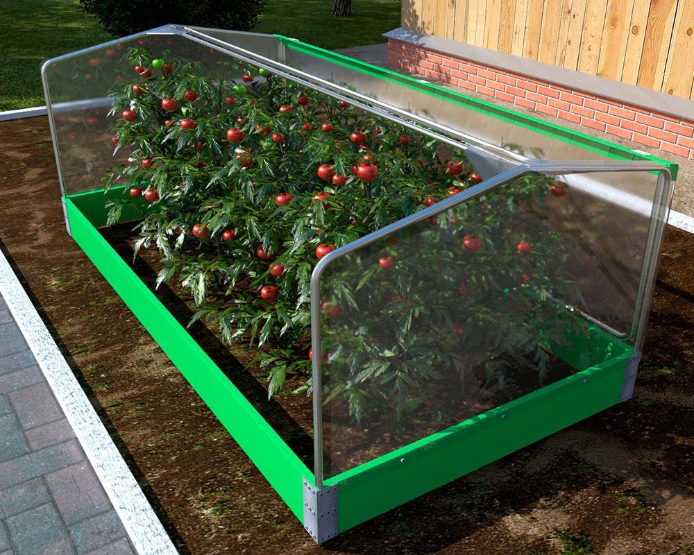 Мини парник для помидоров