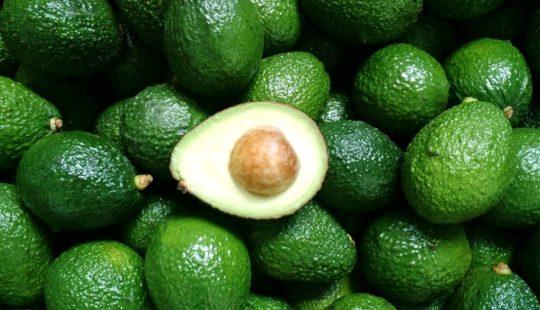 авокадо в домашних условиях