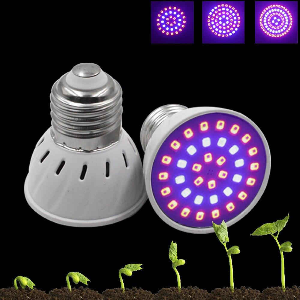 LED-лампы светодиодные для рассады