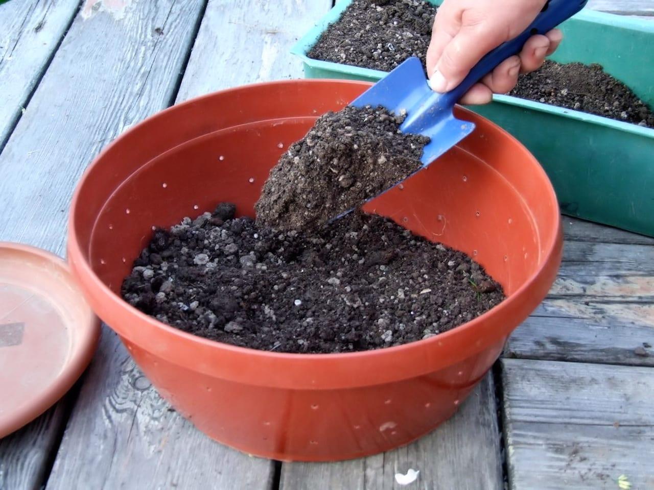 Подготовка почвосмеси для рассады