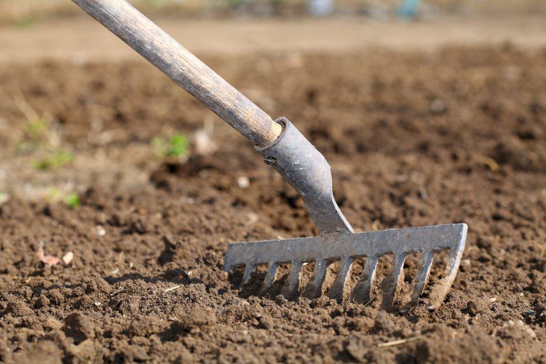 Рыхление почвы весной