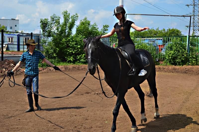 Уроки езды на лошади