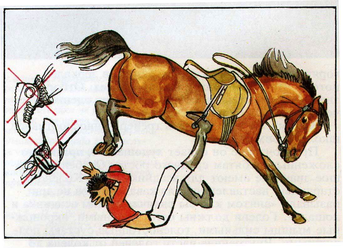 Как правильно падать на лошади