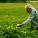 Профессия агроном