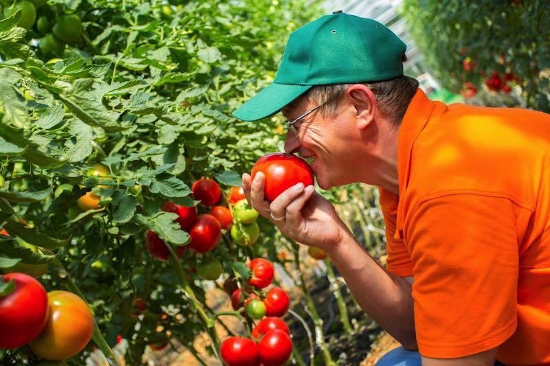 Отзывы о работе агрономом