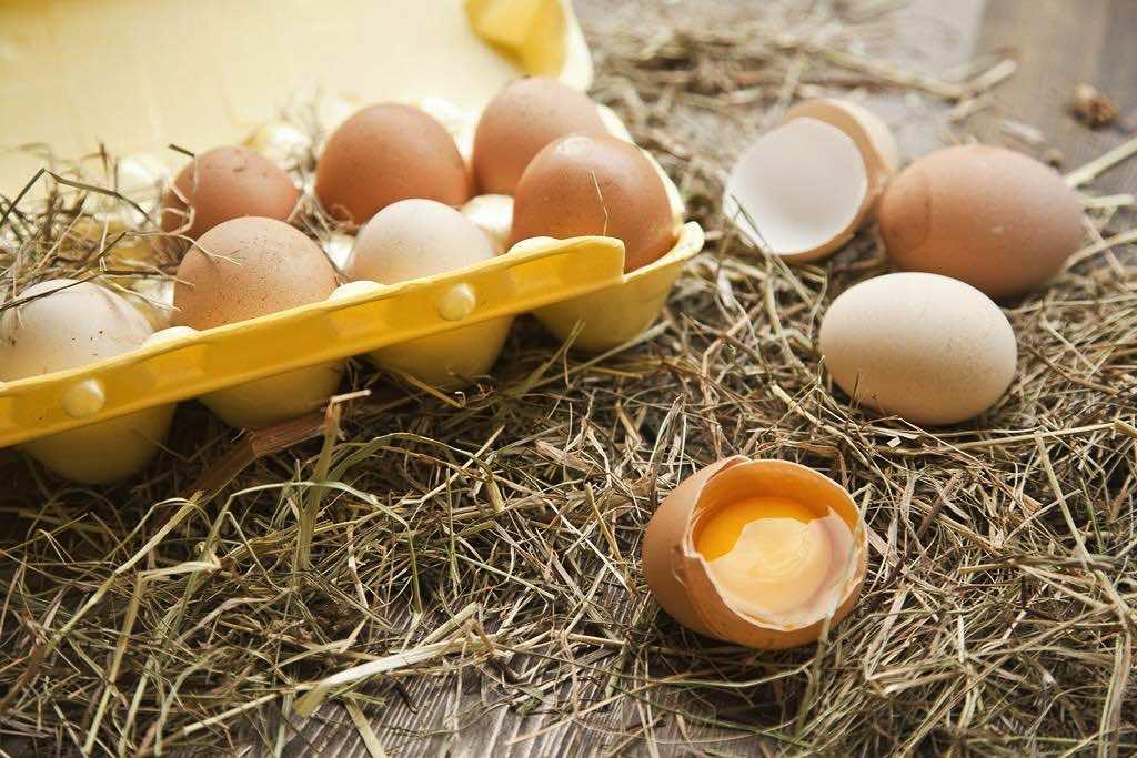 Яйца для здоровья