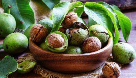Грецкий зелёный орех