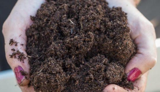 Удобрение почвы перегноем