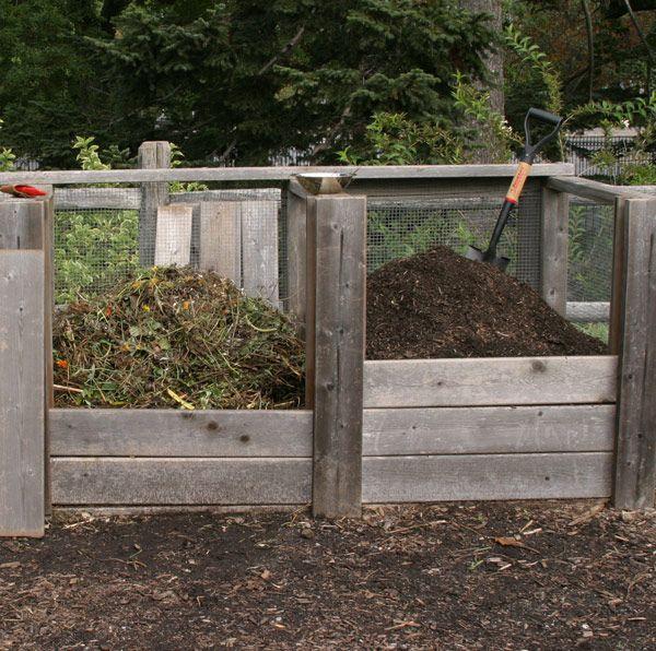 Перегной и компост: в чем разница