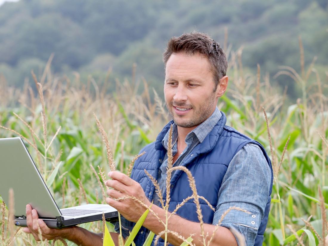 Агроном на поле
